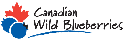 Canadian Wild Blueberries